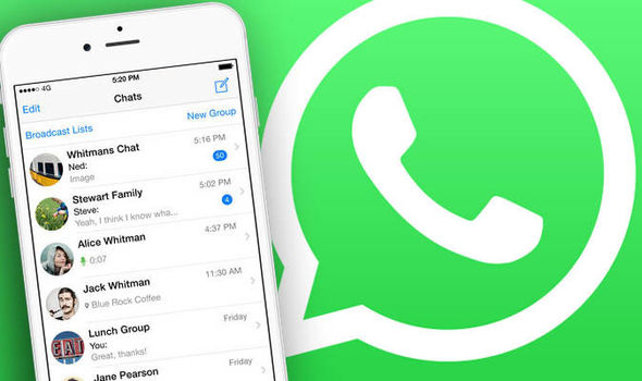 How to check whatsapp message counter of contact chats: Shocking