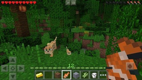 Download Minecraft 1.13.0.18 MOD for Android